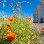 service de médiation pour les ensembles immobiliers
